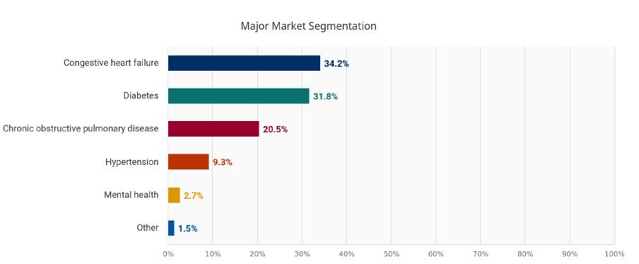 major market segmentation